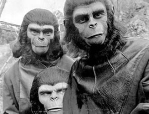 featured_image_apes
