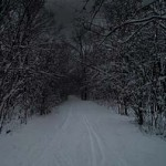 featured_image_snowy