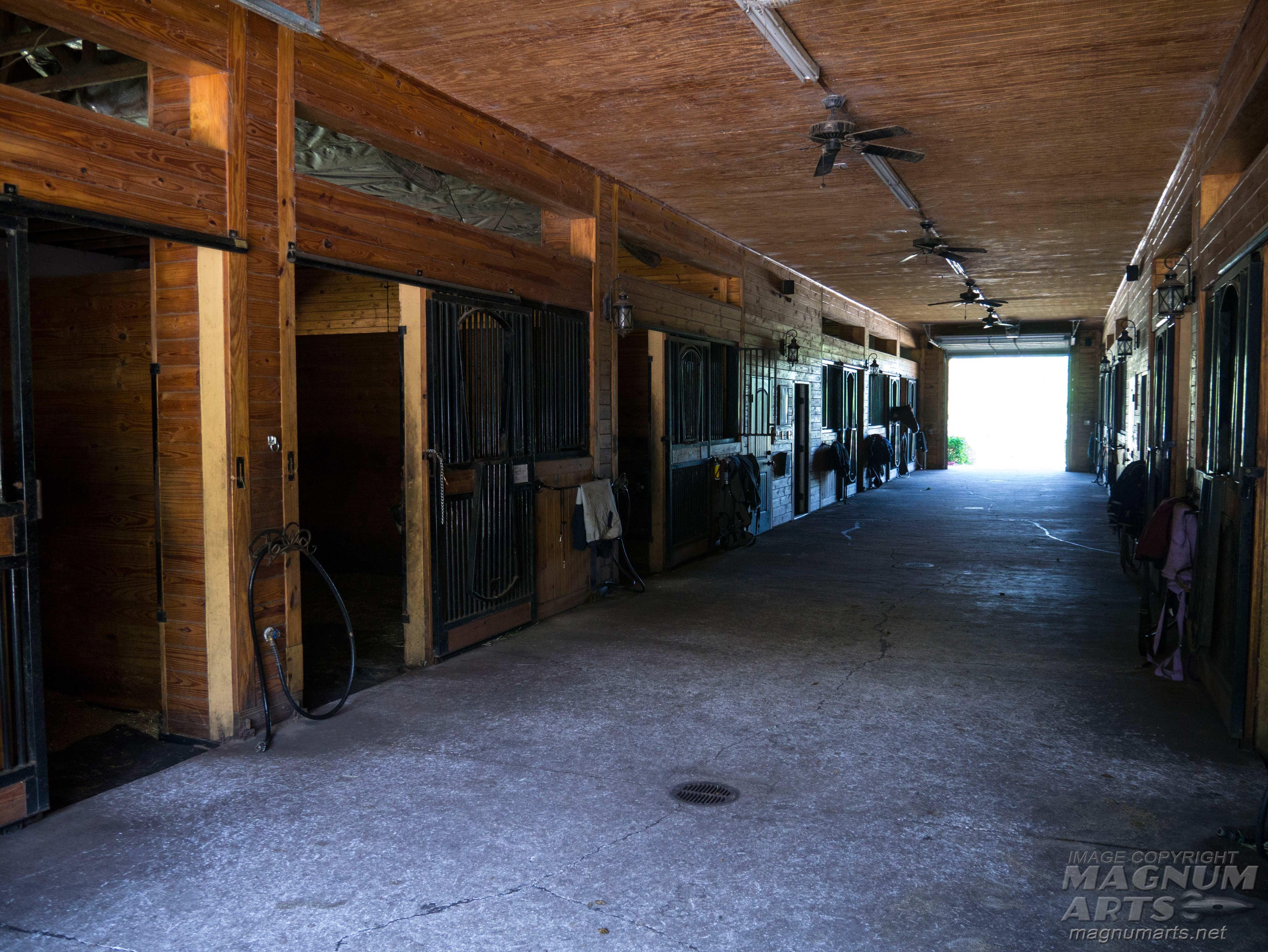 Annwyn Equestrian Center Magnum Arts Blog